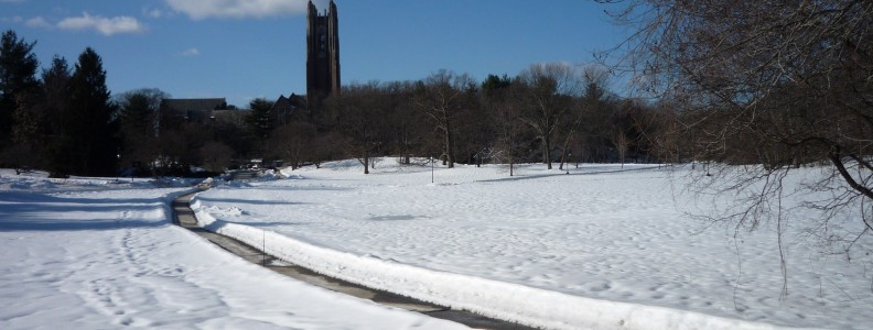 The current cold weather reminded me of a story. A few months ago I read about a life-size statue of an ordinary man that was placed on the snowy grounds of a women's college campus in Wellesley, Massachusetts (Wellesley College). He appeared to be sleepwalking with arms outstretched, eyes closed, and wearing only his underwear. The statue provoked outrage and controversy after its installment last winter.